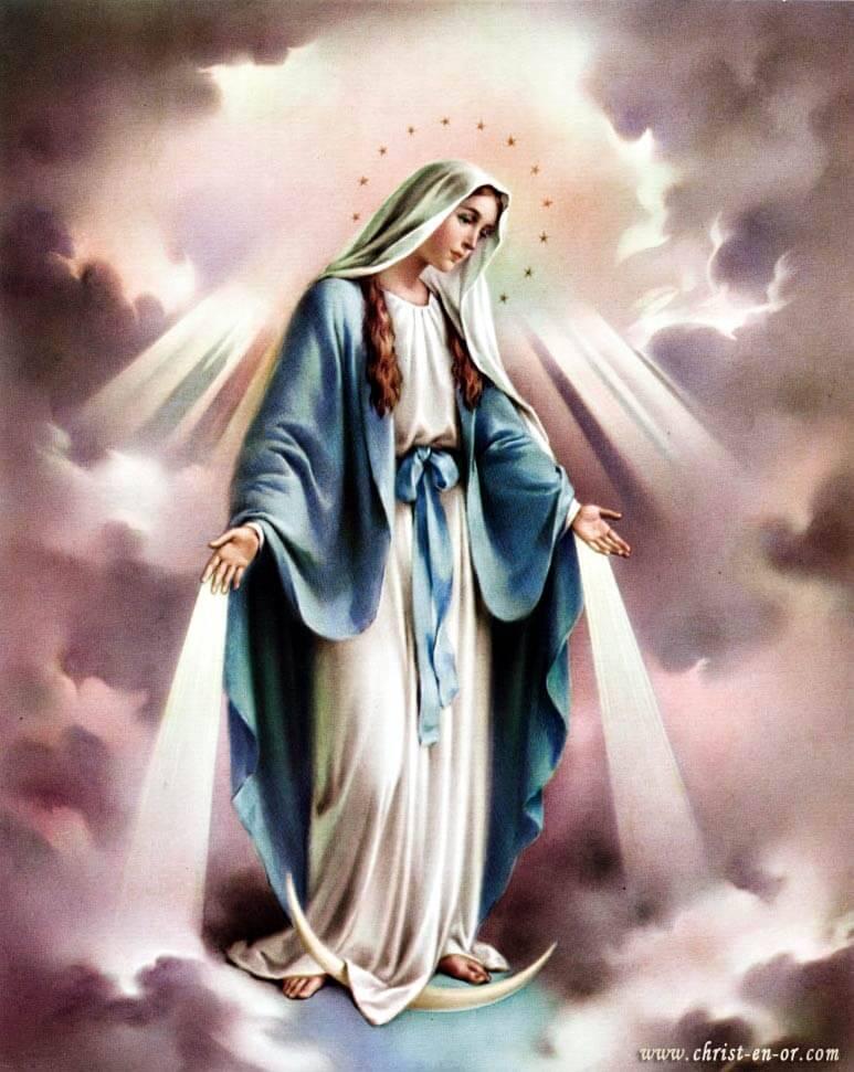 Statue Sainte Vierge à Lourdes 20cm - CHRIST-EN-OR